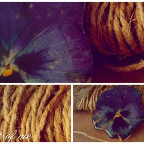 Цветя, любов и стил с Габриела Огнянова