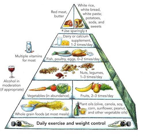 healthy-eating-pyramid-500