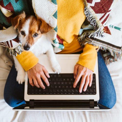 Хоум офисът е сред най-търсените придобивки от служителите